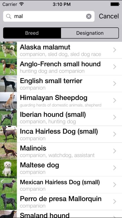 Dogs Catalog screenshot-3