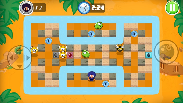 Ninja Boy Adventures - Bomberman edition screenshot-3
