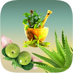 Natural Ayurvedic Healer Remedies Herbal Free