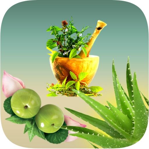 Natural Ayurvedic Healer Remedies Herbal Free