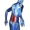 Sciatic Pain Relief - Anthony Walsh