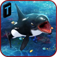 Codes for Killer Whale Beach Attack 3D Hack