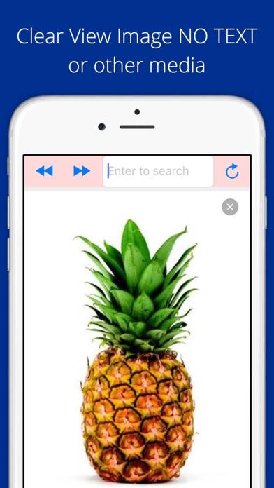 Screenshot #3 pour Universal Image Search Pro