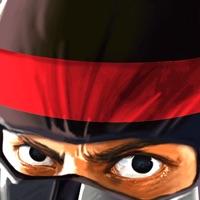 Codes for Ninja Warrior Combat 3D - A Fun Run Jump & Race Game Hack