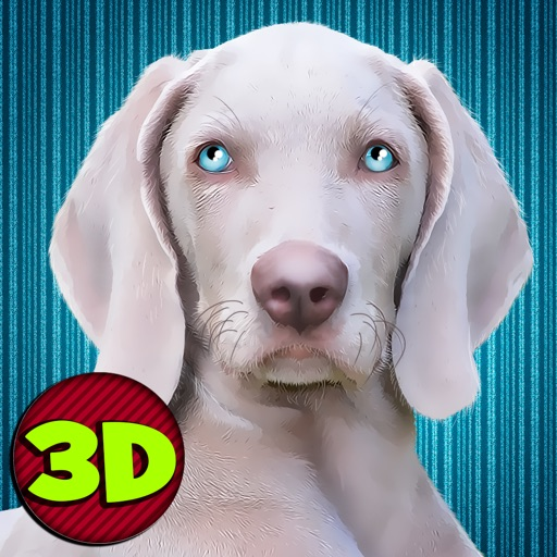 Dog Simulator 3D: House Crash Full