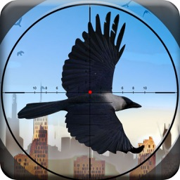City Crow Hunting : Forest Bird Sniper Shooting Game Free