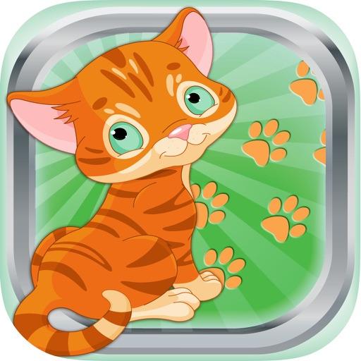 Ruidos talk Gato y gatito maúlla sonidos