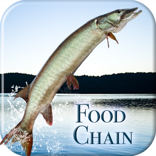 i Fishing Food Chain