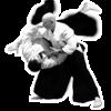 Aikido Master Class - Anthony Walsh