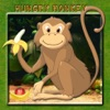 Hungry Monkey Challenge