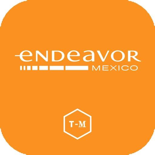 Endeavor VII