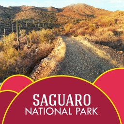Saguaro National Park Travel Guide
