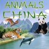Animals China - Алексей Neronov