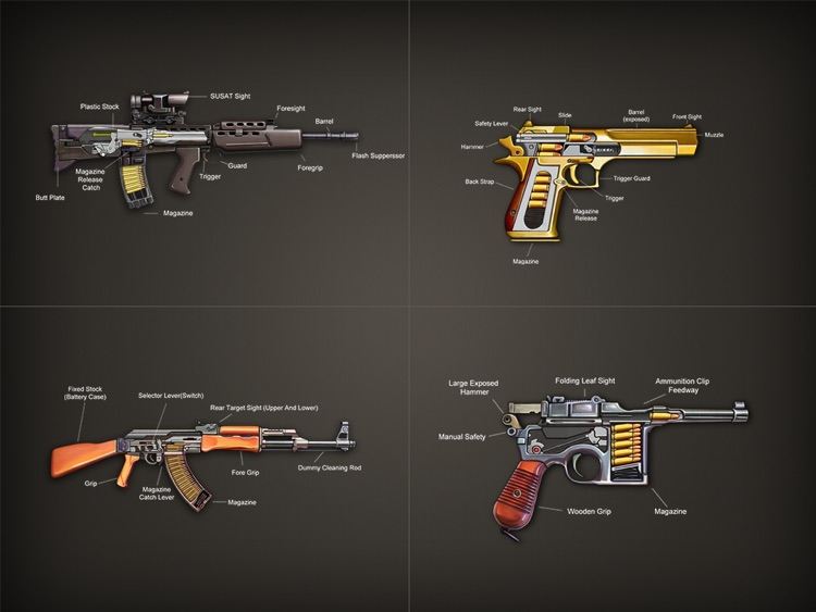 Gun Works Pro for Works, open gun, gun theory screenshot-0