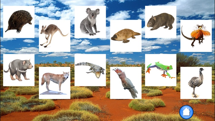 Animals Australia screenshot-1