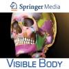 Skeleton Premium for Springer (Skelet Premie voor Springer)
