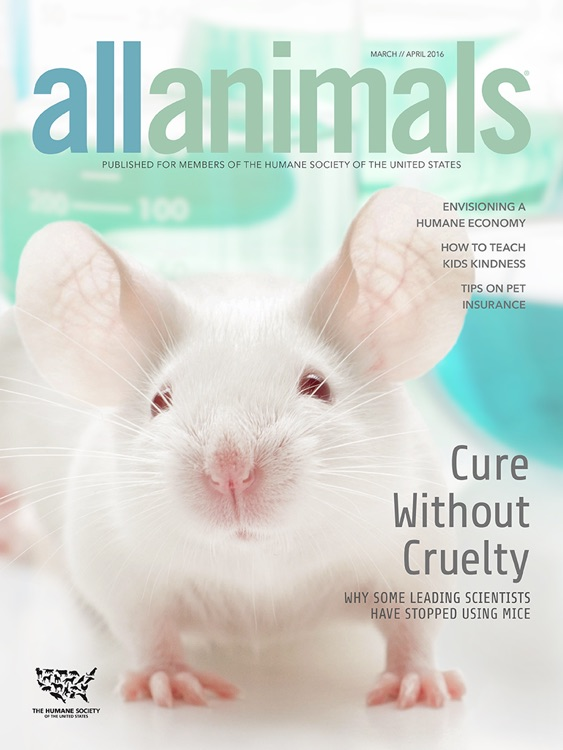 All Animals Magazine screenshot-0
