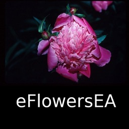 Wildflowers of Europe & Asia - A Wildflowers App