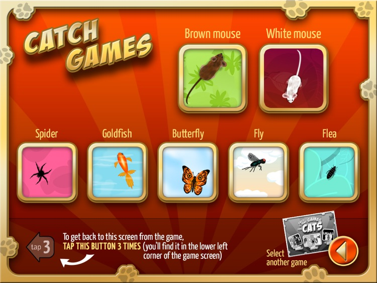 Catch and Paint Games for Cats