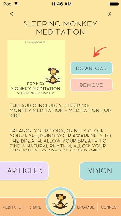 Weight Loss Monkey Meditation
