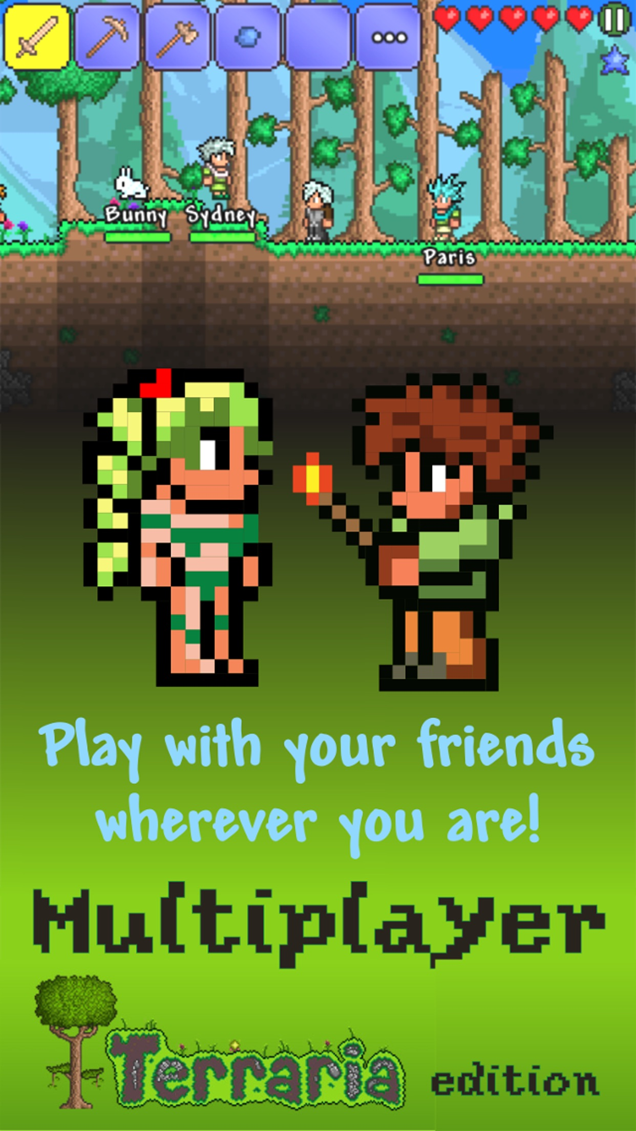 Multiplayer Terraria edition Screenshot
