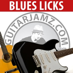 Blues Guitar Licks Lessons