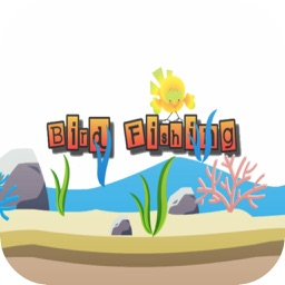 Bird Fishing - Cute Bird Free Game for Kids