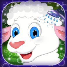 Activities of Baby Sheep Salon