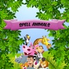 Spell Checker - Animal Theme Puzzle Game