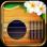 Futulele - Digital Ukulele with FX and chords