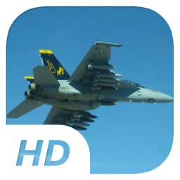 Fighting TomMarauder - Flight Simulator