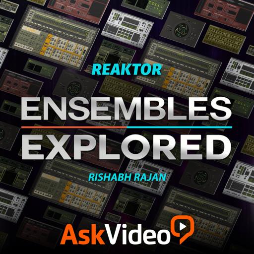 Ensembles Explored For Reaktor