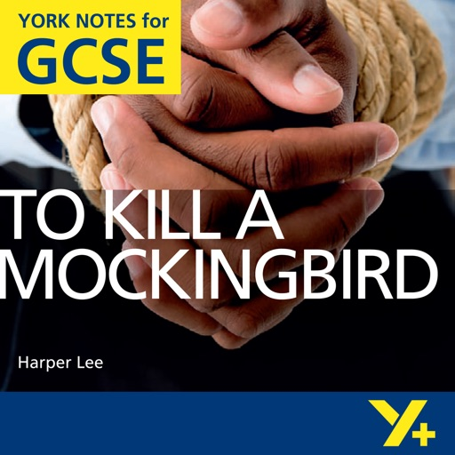 To Kill A Mockingbird York Notes GCSE