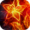 Screenify - Awesome HD Themes, Wallpapers & Backgrounds