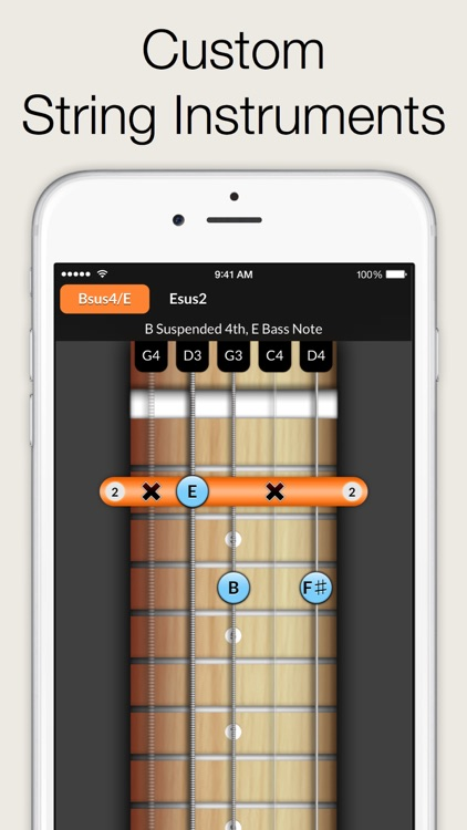 Reverse Chord Finder Pro - Inverse Chord Dictionary for Songwriters, Musicians, Composers and Music Students screenshot-3