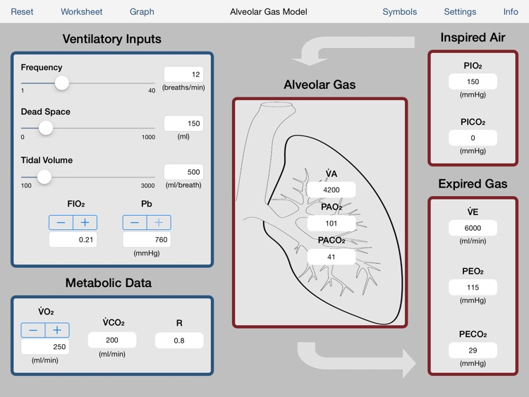 Alveolar Gas