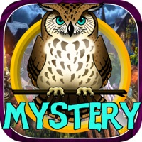 Codes for Hidden Objects:mystery of owl spirits Hack