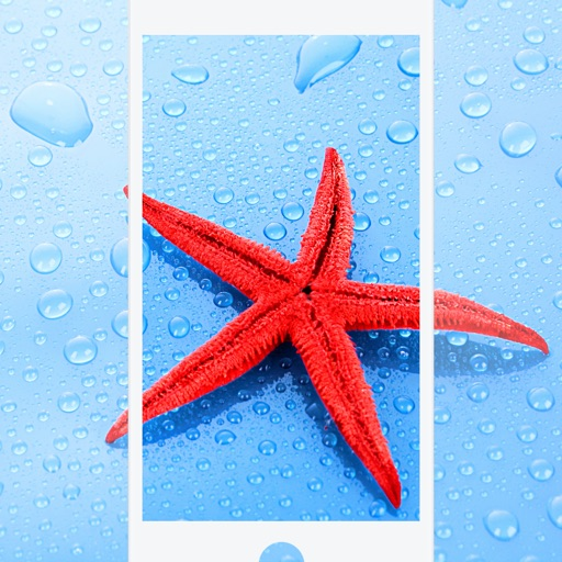 Brilliant Wallpapers and Cool Themes to Beautify your Screen