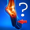 Anatomy Foot Quiz - iPhoneアプリ