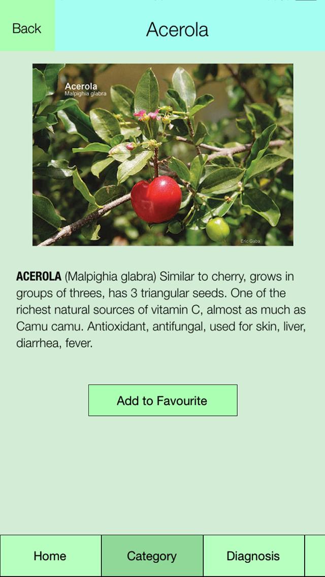 Edible Plant Guideのおすすめ画像3