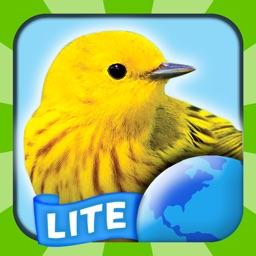 My Bird World Lite