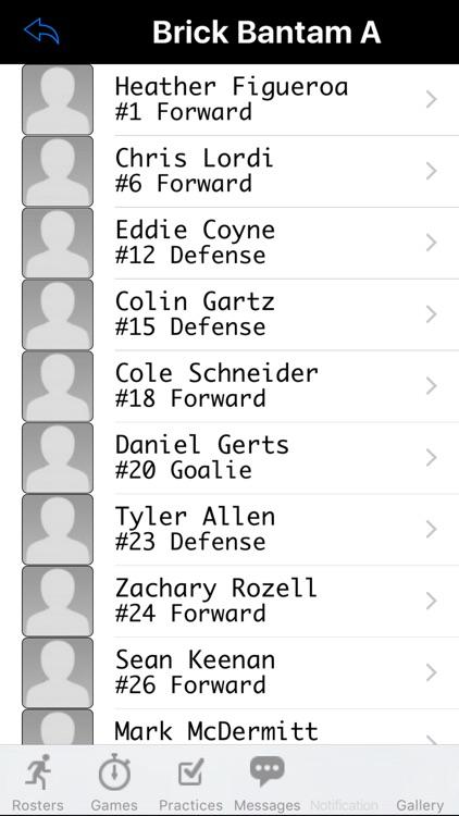Brick Hockey Club screenshot-3