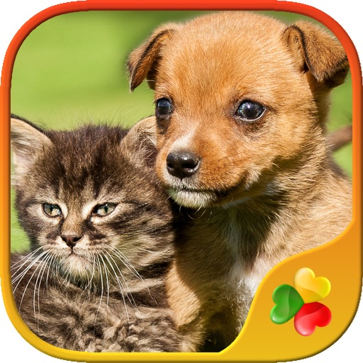 Cute Pets - Real Dogs and Cats Picture Puzzle Games for kids iOS App