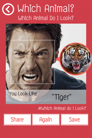 Which Animal Do I Look? - náhled