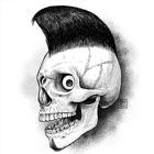 Skull Art Theme HD Wallpaper y Mejor Citas inspiradas Fondos Creador icon