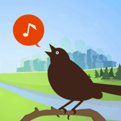 Chirp! Bird Song USA + icon