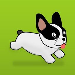 Run Doggy Run - Endless Runner