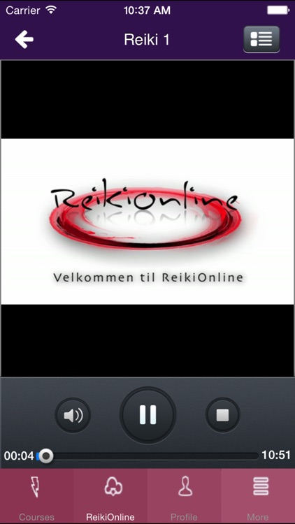 ReikiOnline screenshot-2