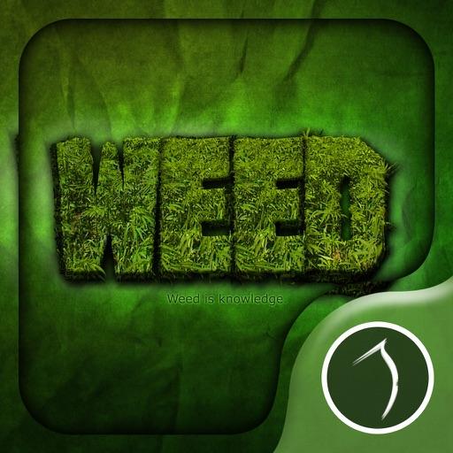 Weed Wallpaper: HD Wallpapers