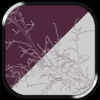 Other Place - APPUM™ - iPhoneアプリ